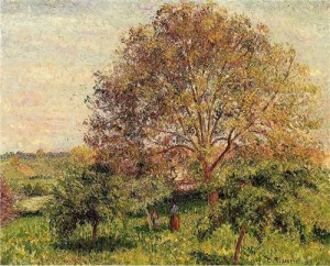 walnut-tree-in-spring-1894  Camille Pisarro